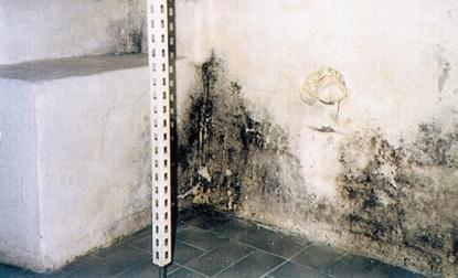 Trajna sanacija kondenzne vlage in zidne plesni / www.timopara.si